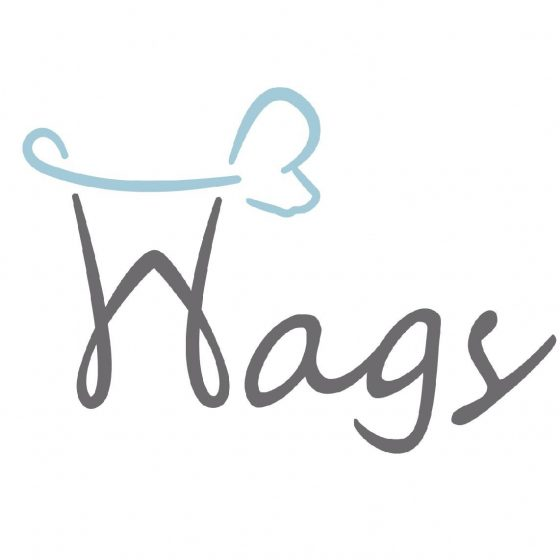 Wags Grooming Services