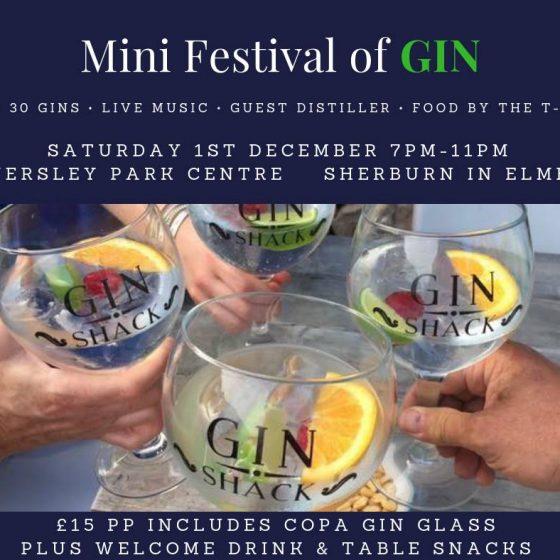Mini Gin Festival!