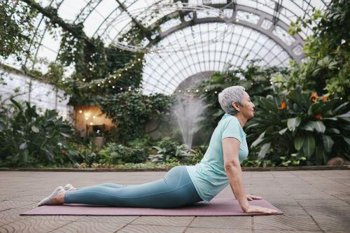 Yoga for beginners and Intermediate